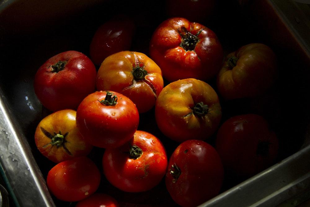 tomatoes_04.jpg