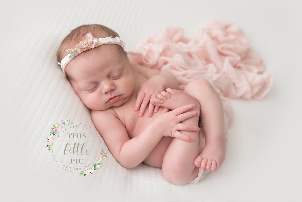 bellevue newborn photographer seattle newborn photographer best bellevue newborn photographers