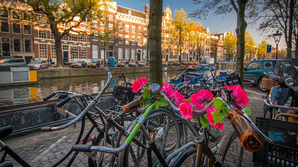 Amsterdam_Bikes3.jpg