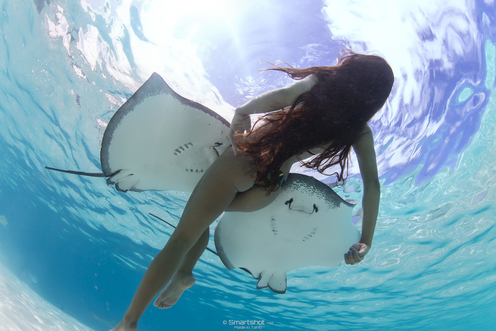 Photographer: Smartshot-Tahiti   ©2016 Rava Ray