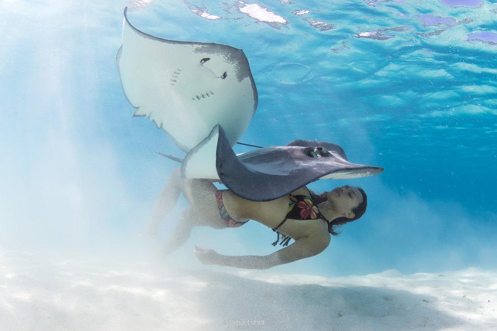 Photographer:  Smartshot-Tahiti   ©2017 Rava Ray