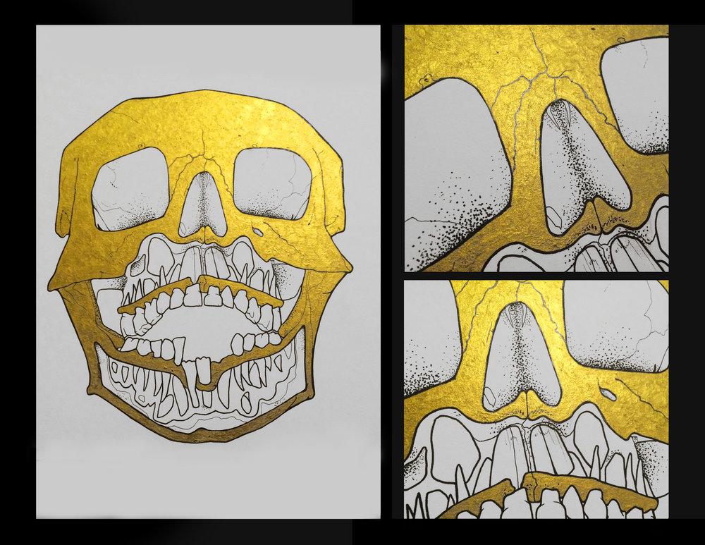 Rava Skull.jpg