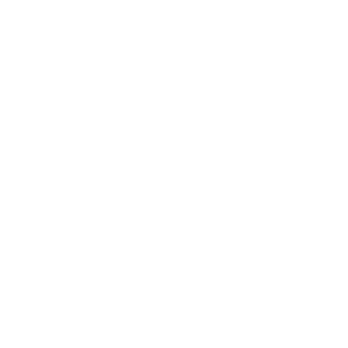 Digger and Knox Surfing Boards