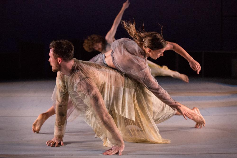 Dancenorth premieres new work Dust -