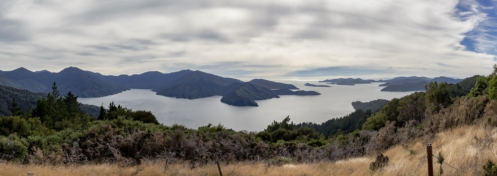 Looking out towards Wellington.