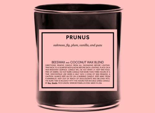prunus+rgb.png