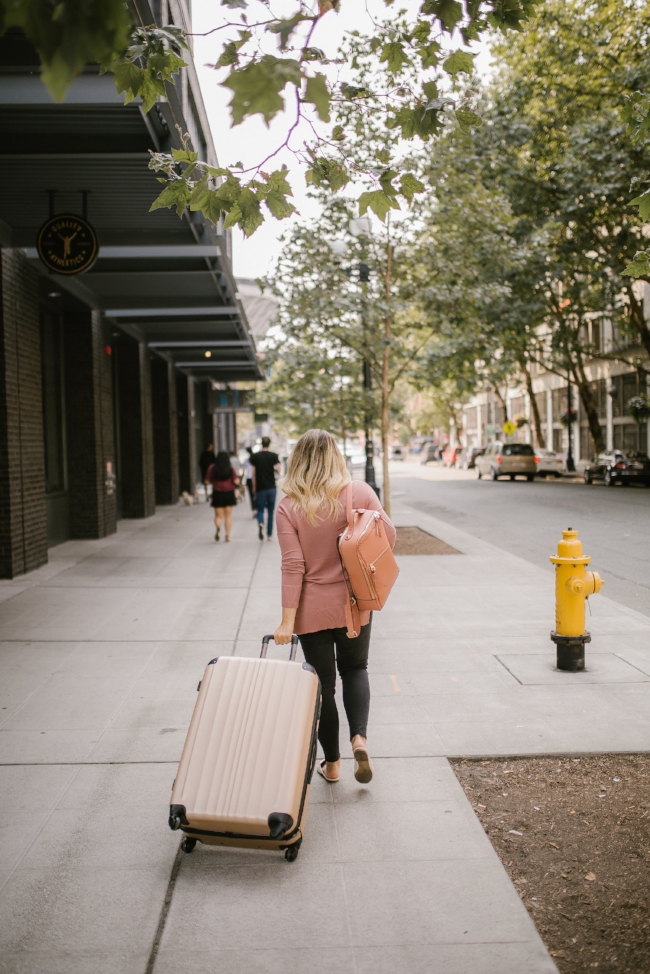 calpak luggage set  //  calpak laptop backpack