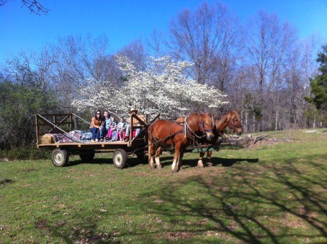 Spring Hay Ride