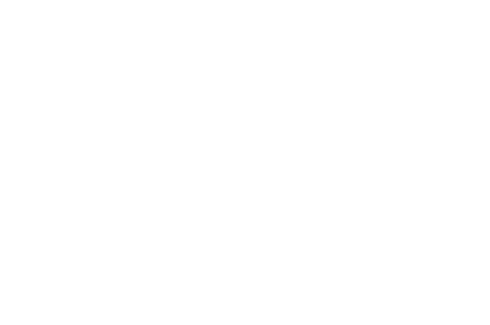 5. SFF 2017.png