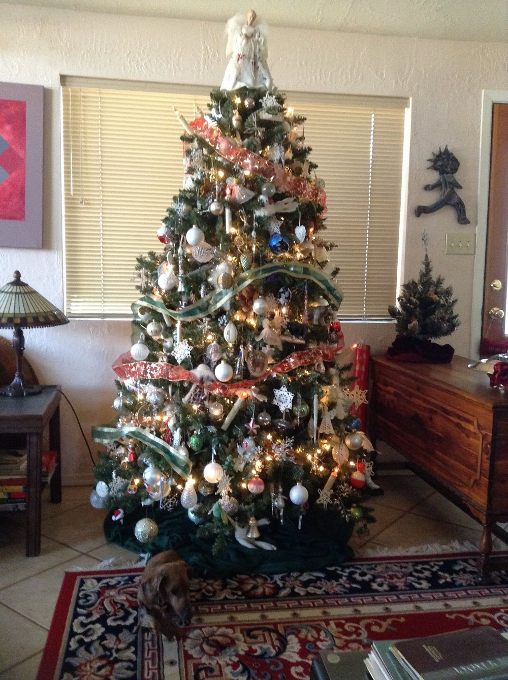 Tree # 1, living room, Sedona, December 2017, plus small tree to right
