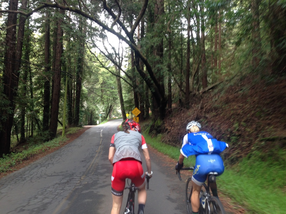 Riding with rockstars in the beautiful forests of California!