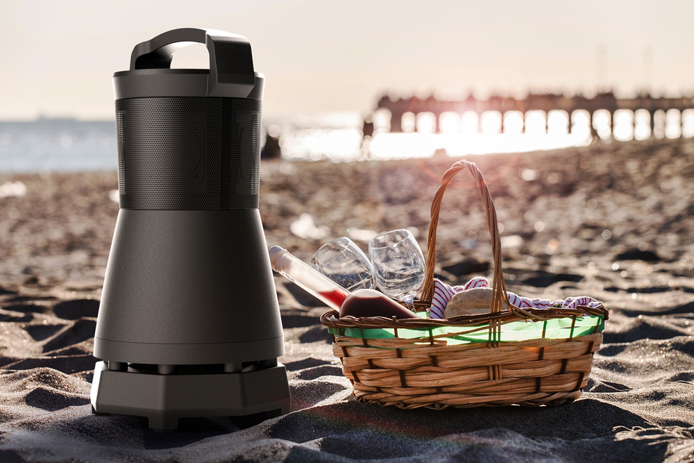 OTD-360_beach picnic.jpg