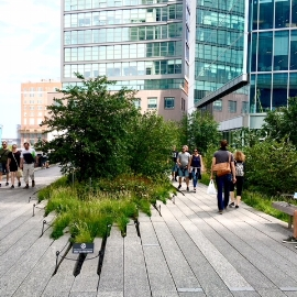 New York Highline - one of the World's best known Roof Gardens