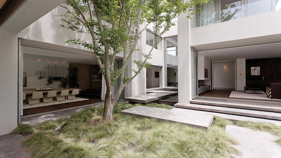 All the rectangular lines in this Courtyard are relaxed with the soft wispy grasses.