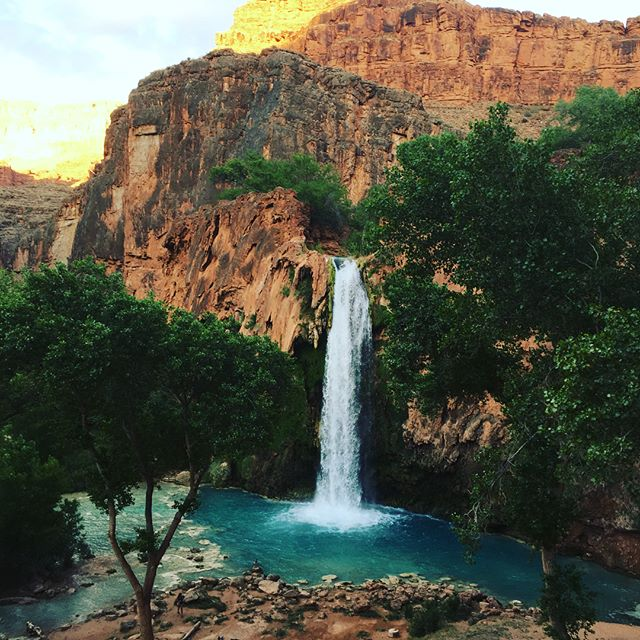 #HavasuCreek is the lifeblood of the #Havasupai Tribe. Its flow sustains the awesome Fifty Foot, Navajo, #Havasu, and Mooney waterfalls that attract hikers from all over the world. The tribe's adoption of #compostingtoilets protects the pristine water while keeping up with the bathroom needs of a growing number of visitors.