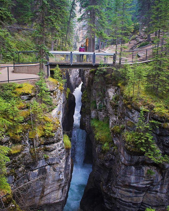 This kind of moment is rare. Don't waste it. . . . #malignecanyon #jasper #jaspernationalpark #raremoments #falls #hiking #hikingadventures #adventure #exploremore #travelcanada #beautifulnature #canadaoutdoors #borealnorth