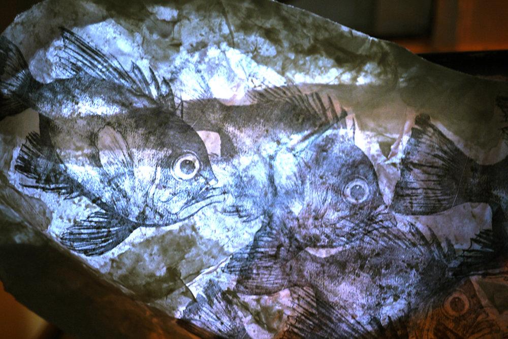 03_BeatriceGlow_AquariumFromAustronesia_2012.jpg