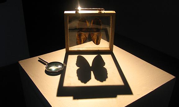 9-Museo-Migratoio-Enlace.jpg