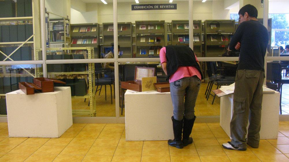 13_BeatriceGlow_MigratoryMuseumInstallView_2009.JPG