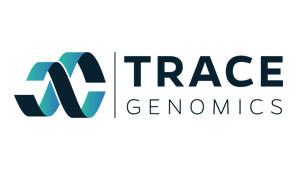 trace-300x179.jpg