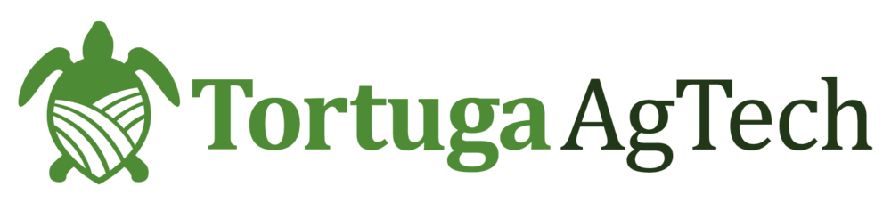 Tortuga - EA exported.png