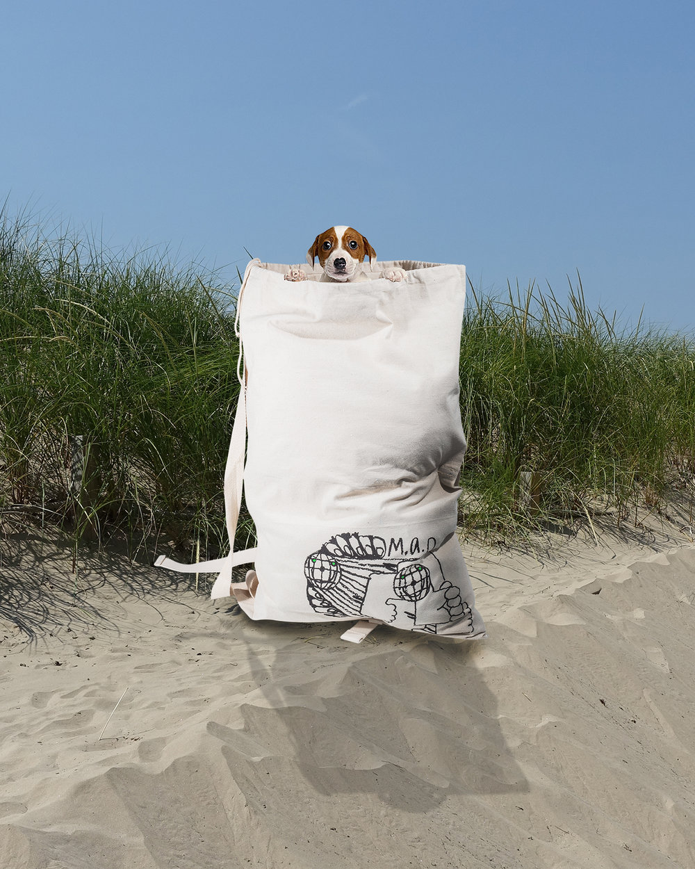 dog-bag.jpg