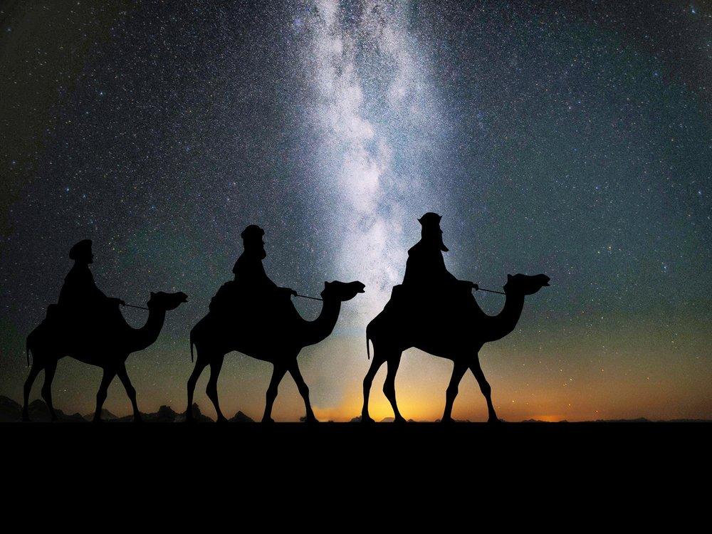 camels-1150075_1920.jpg