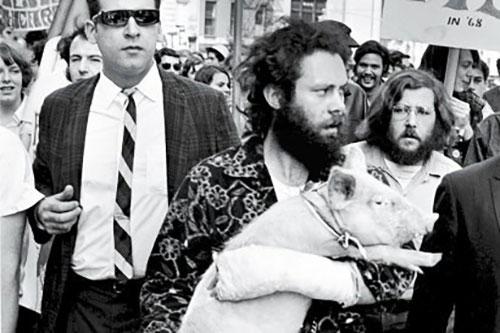 Pigasus es paseado en manifestación.