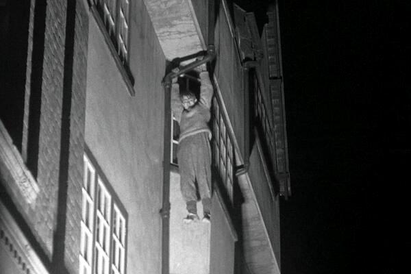 night climbers 3.jpg