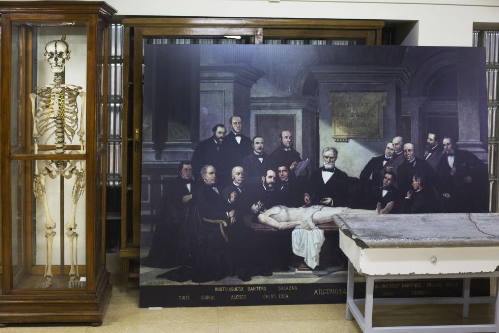 Museo de Anatomía «Javier Puerta». Fotografía: Gorka Lejarcegi / El país