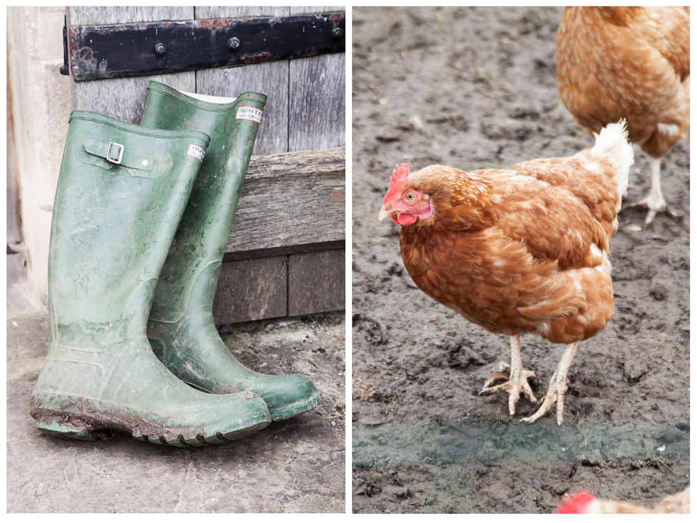 Yes, that's actual mud, and those are real, tasty chickens/Photo:Susie Lowe
