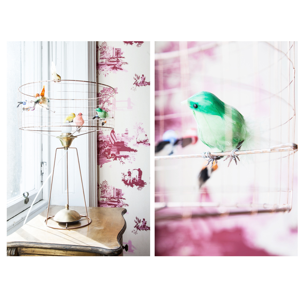 Crazy bird cage lamp/Photo: Susie Lowe