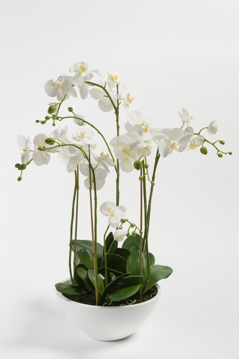 Pad white faux orchids in a bowl