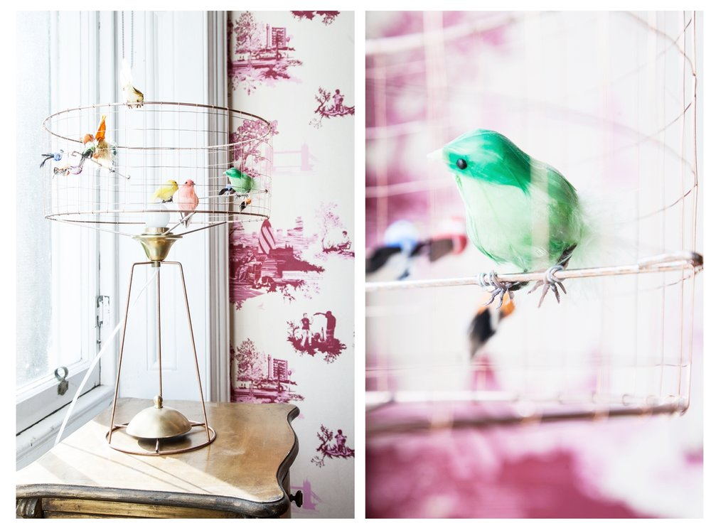 Volieres birdcage lamp as seen in The Pink House Edinburgh/Photo: Susie Lowe
