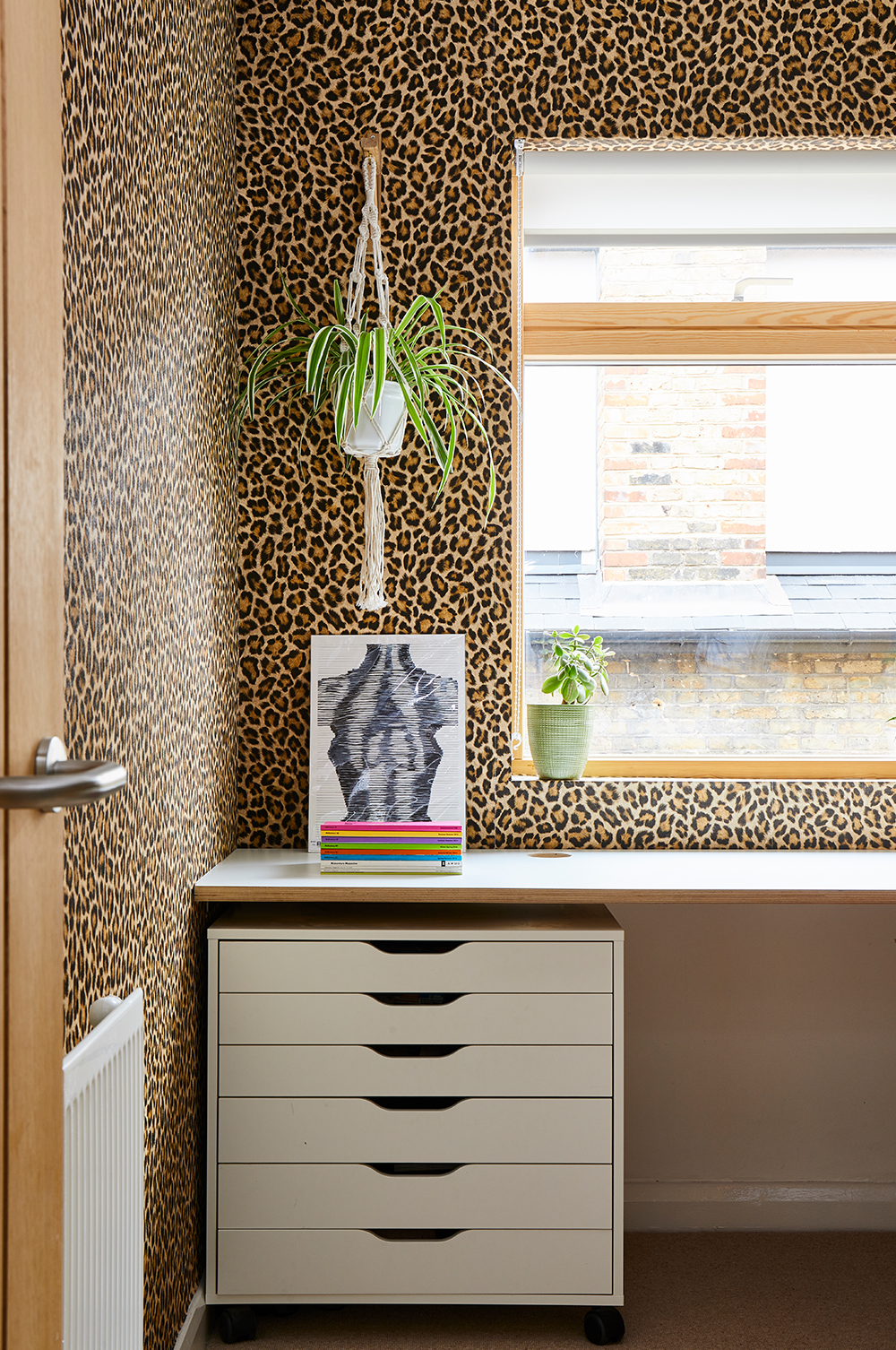 Bo's leopard print study papered in Albany's Big Cat