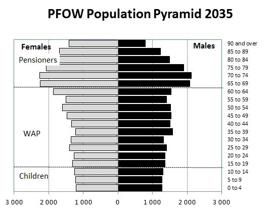 Figure      SEQ Figure \* ARABIC    1      : Population Pyramid for the Pentland Firth and Orkney Waters Area 203