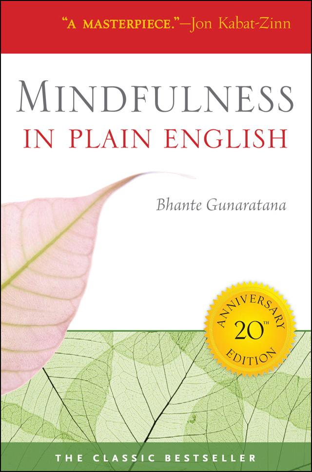 "The best EXPLANATION of how to meditate mindfully out there: ""in plain english"""