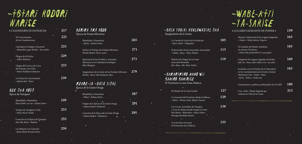 Indice 2 refJAGUARES - ©ACAIPI y FGA.jpg