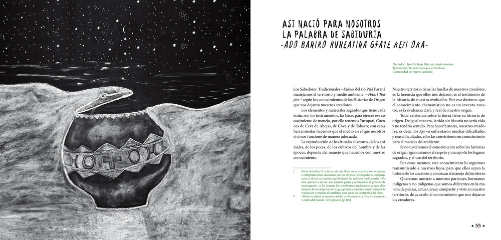 pplibro6 refJAGUARES - ©ACAIPI y FGA.jpg