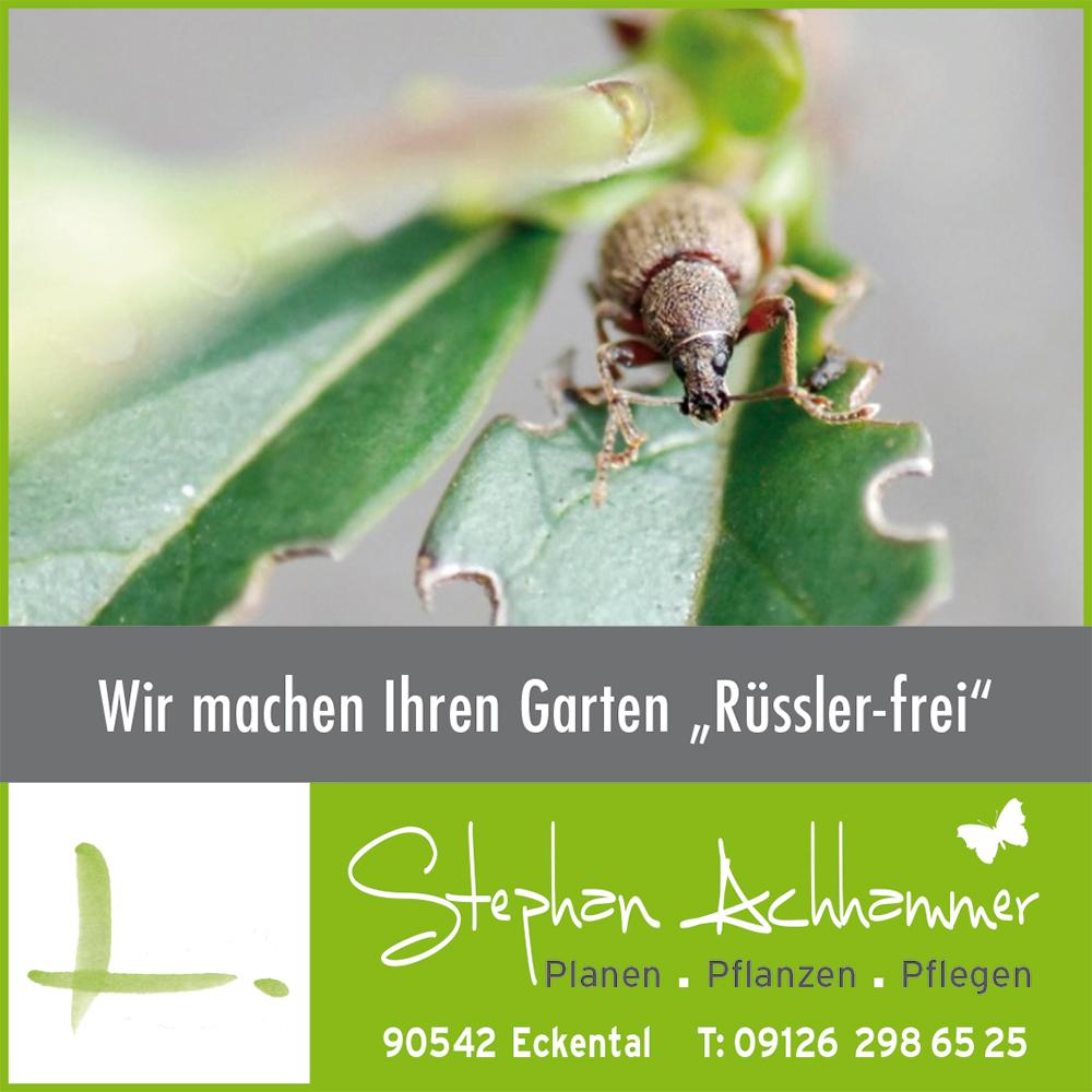 RZ_Stephan Achhammer_Anzeige_Dickmaulrüssler.jpg