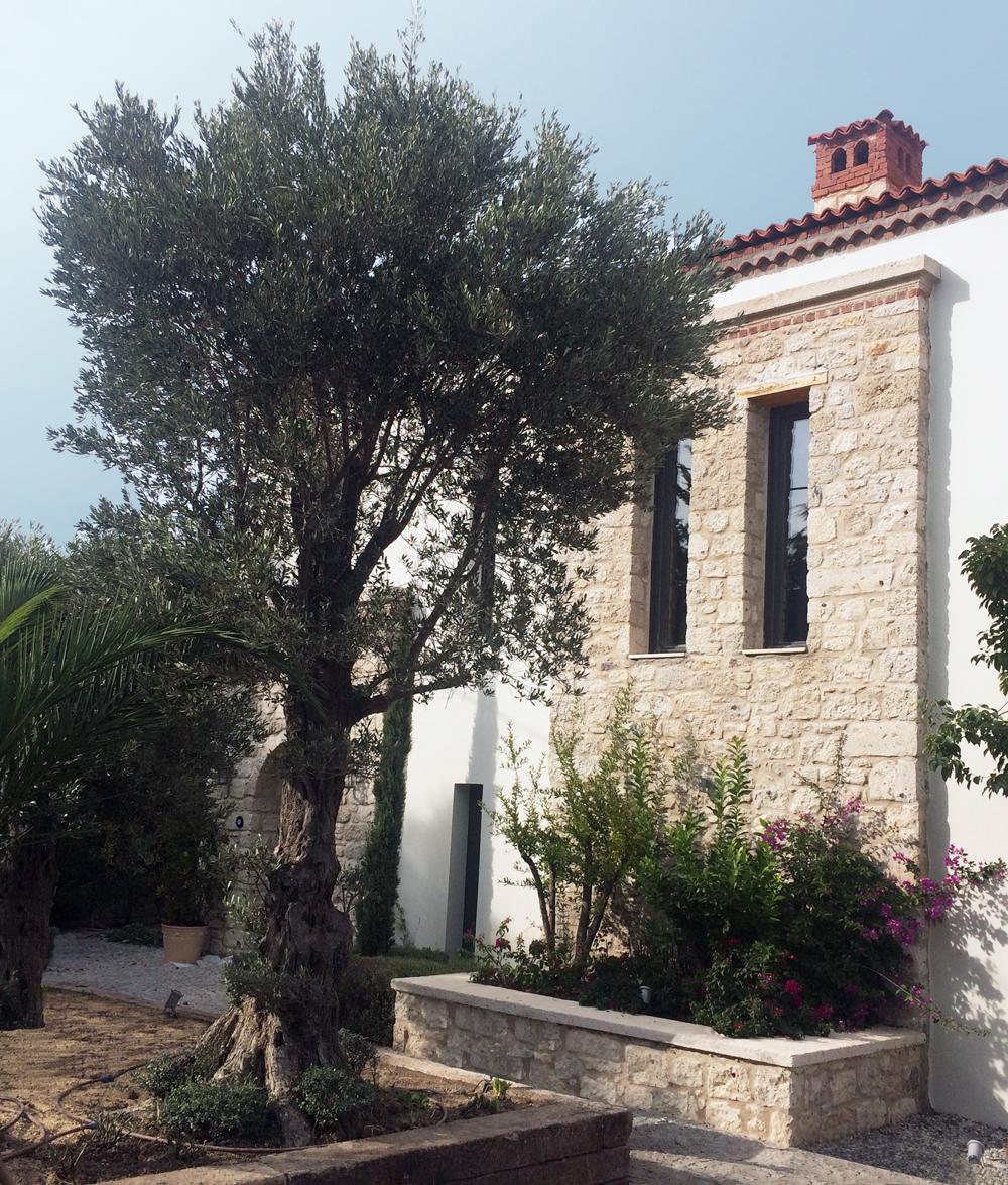 UZUN HOUSE I ALACATI