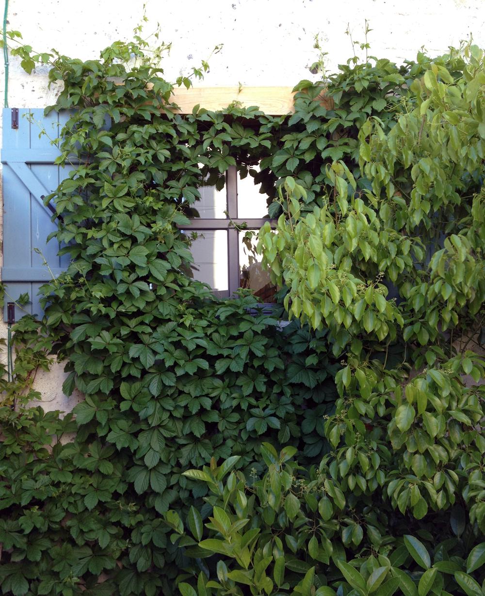 OZRN HOUSE I ALACATI