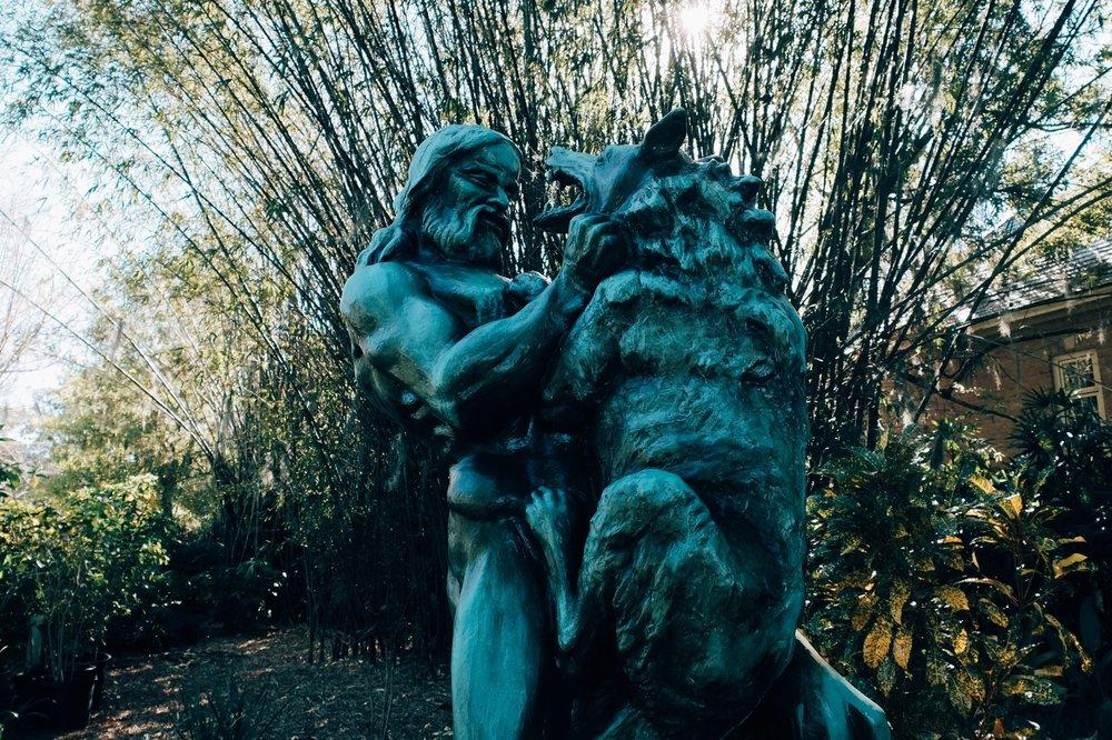 tuscwolf.jpg