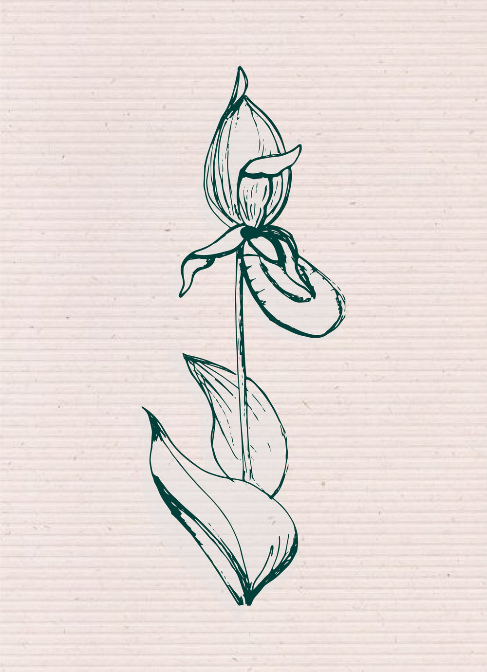 sketches-03.jpg