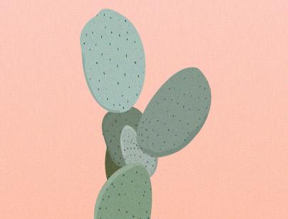 cactidribbble.png