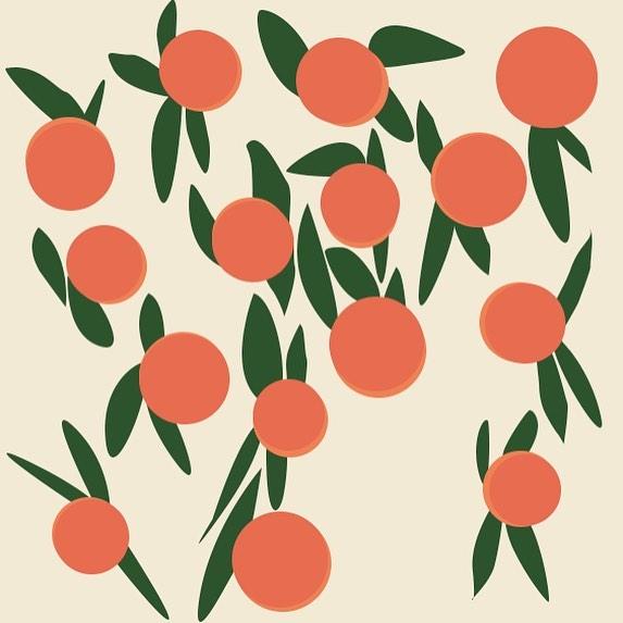🍊 orange grove