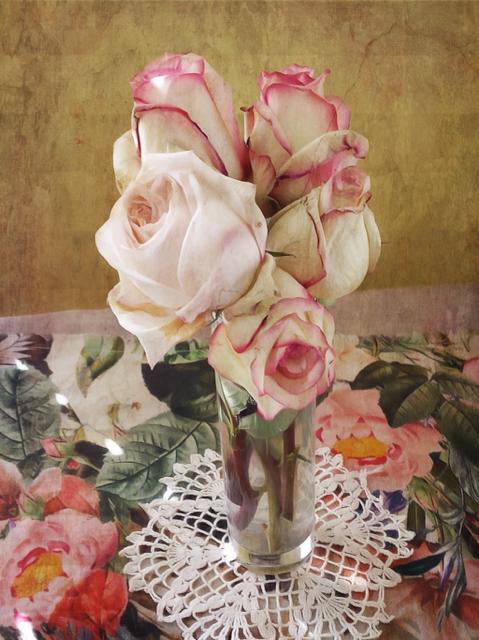 antique_roses
