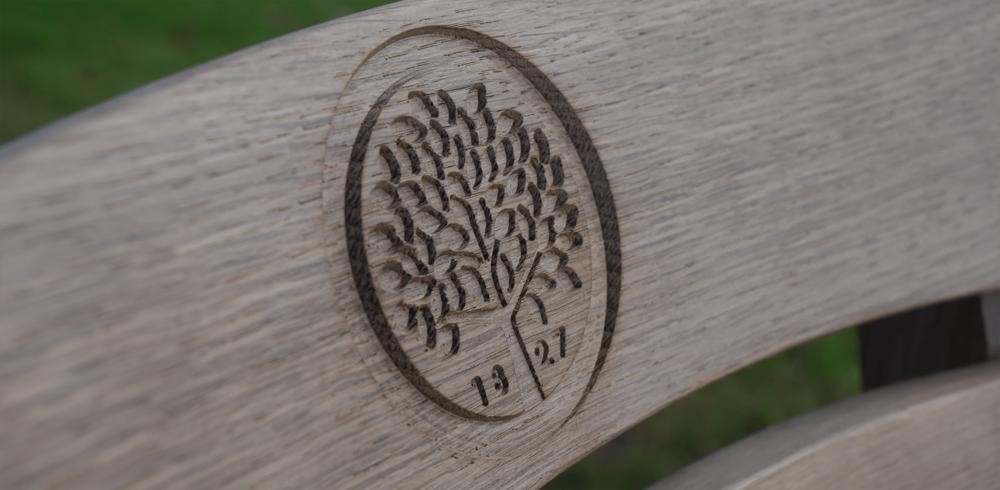 Oak Tree 1.jpg