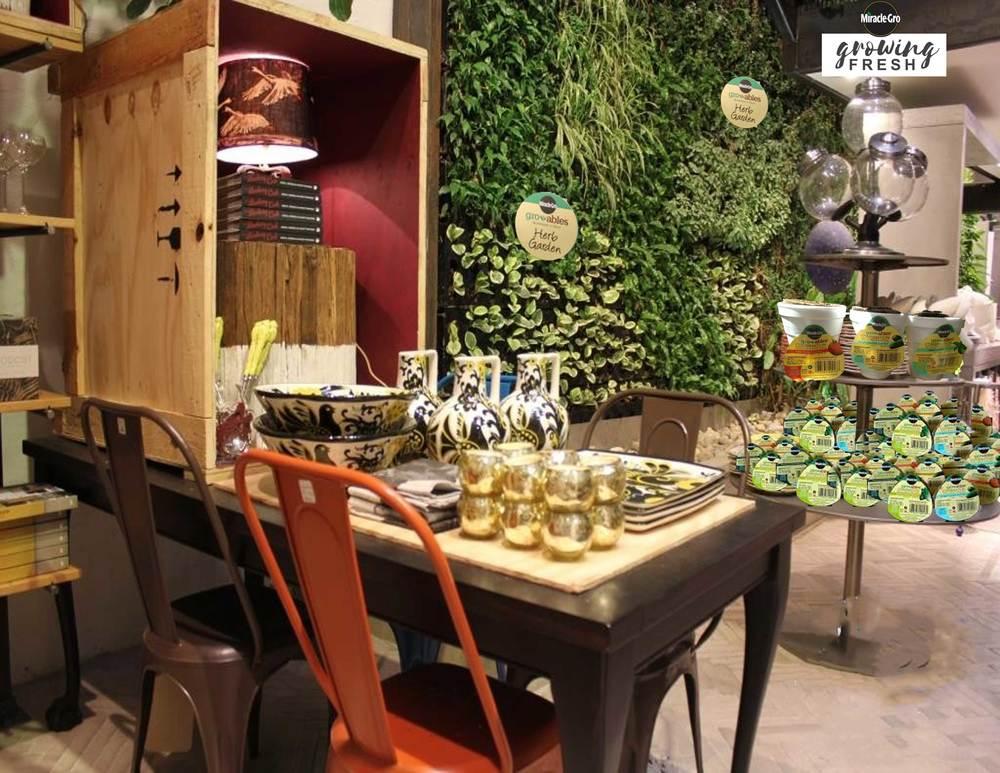 West Elm shopper marketing herb wall display