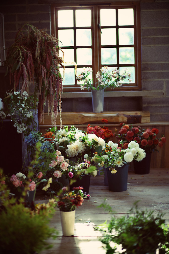 Flowers0122.jpg